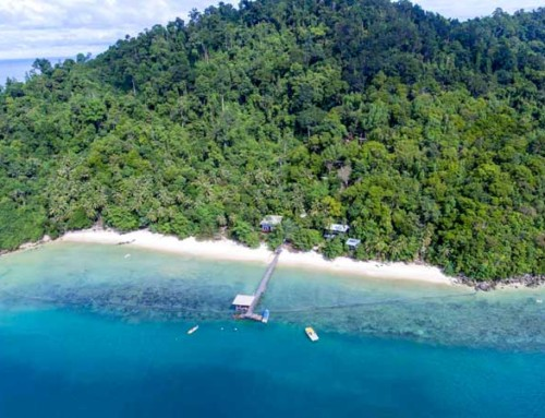 In progress – Mari Mari Sepanggar Island Lodge, Kota Kinabalu, Malaysia