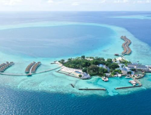 Centara Ras Fushi, North Malé Atoll, Maldives
